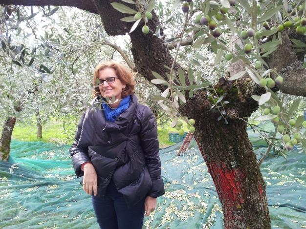 Angela tra gli ulivi
